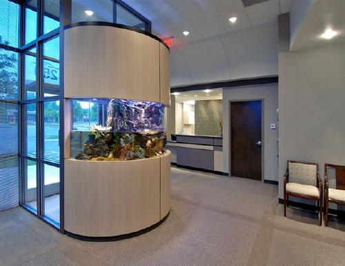 Just add water 39 s spectacular aquatic concepts for Office fish tank